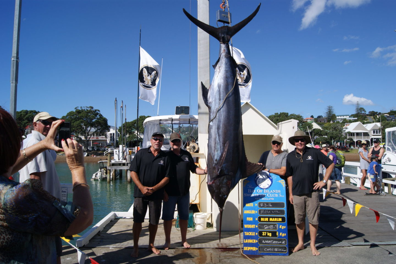 Zane Grey Tournament 2014 - Caribbean Boats NZ